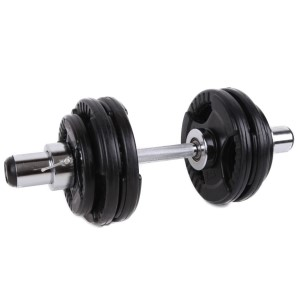 Olympic Dumbell with Bearings
